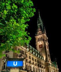 Hamburger Rathaus zu später Stunde von Thomas Sonntag