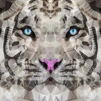 white Tiger by ancello