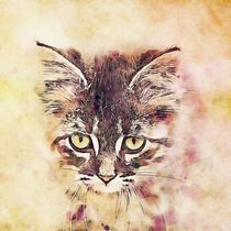 Watercolor Cat by ancello