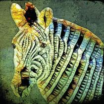 abstrakt Zebra von ancello