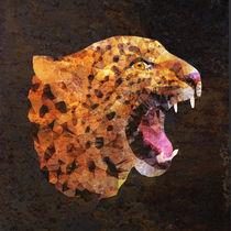 leopard von ancello