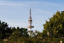 Fernsehturm in Hamburg von Karsten Bergmann