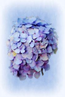 Blue by CHRISTINE LAKE