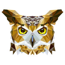 Polygon Owl by ancello