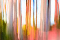 Moving Trees #3 von Eugene Norris