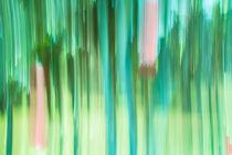 Moving Trees #4 von Eugene Norris