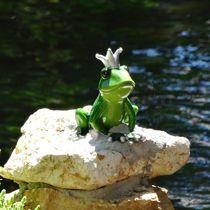 Froschkönig an der Blau von kattobello