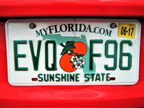 Florida Autokennzeichen von assy