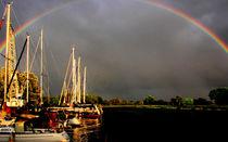 nach dem regen by k-h.foerster _______                            port fO= lio