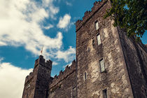 Bunratty Castle 01 von AD DESIGN Photo + PhotoArt