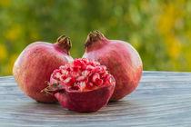 Granatäpfel  von Christoph  Ebeling