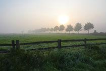 Morgens an der Weide von Bernhard Kaiser