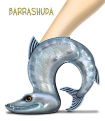 Barrashuda by anarkissed