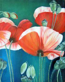 Mohnblumen von Martina Seider