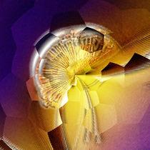 Broken sundawn artwork von Ingo Menhard
