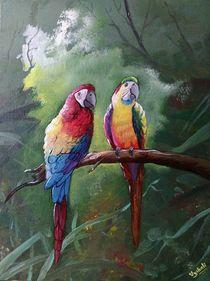 parrots by Vyshali Acharya