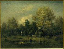 N.Diaz de la Peña, Landschaft mit Tümpel im Wald (Fontainebleau) von AKG  Images