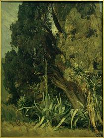 H.P.Feddersen d. J., Im Park der Villa d'Este in Tivoli von AKG  Images
