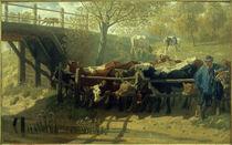 T.Schmitson, Dürstende Kühe von AKG  Images