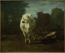 C.Troyon, Zwei Kühe von AKG  Images
