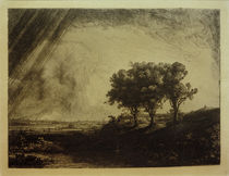 Rembrandt / Three Trees / etching by AKG  Images