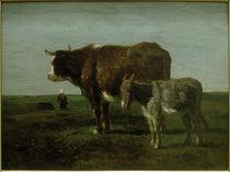 C.Troyon, Kuh mit Esel von AKG  Images