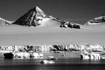 Antarctic Illusion  by PAMELA JONES