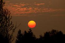 Morgensonne by Christoph  Ebeling