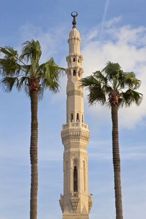 Minaret of mosque, Alexandria, Egypt by Danita Delimont