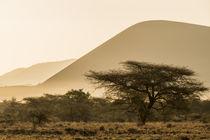 Africa, Kenya, Chyulu Hills, Old Donyo Wuas Lodge, Mbirikani, sunrise von Danita Delimont