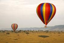 Africa, Kenya, Maasai Mara by Danita Delimont