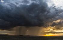 Storm over Amboseli NP, Kenya by Danita Delimont