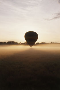 Kenya, Masai Mara National Reserve, Balloon ride at morning mist von Danita Delimont