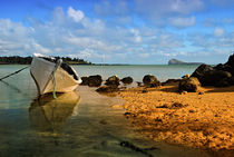 Fishing boat on Mauritian Beach with islet of Mauritius Coin... von Danita Delimont