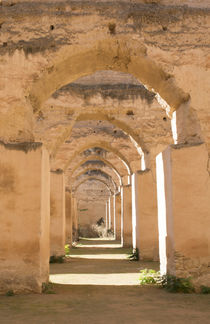 Meknes, Morocco columns of Hri Souani former horse stalls in... by Danita Delimont