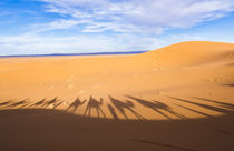 Morocco Sahara Desert sand dunes in Las Palmeras area with s... by Danita Delimont