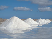 Salt works at the salt marshes of Sabkhat Tazra in the Kheni... von Danita Delimont