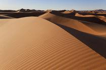 Dunes, Erg Chebbi, Sahara Desert, Morocco von Danita Delimont