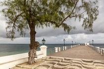 Africa, Mozambique, Mozambique Island by Danita Delimont