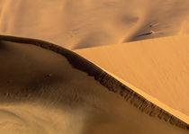 Africa, Namibia, Namib-Naukluft Park von Danita Delimont