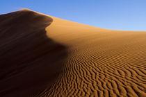 Africa, Namibia, Namib-Naukluft National Park by Danita Delimont