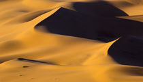 Africa, Namibia, Namib-Naukluft National Park von Danita Delimont