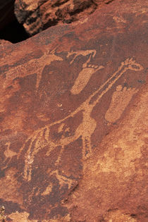 Ancient rock etchings, Twyfelfontein UNESCO World Heritage S... by Danita Delimont