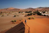 Family climbing sand dune at Sossusvlei, Namib-Naukluft Nati... by Danita Delimont