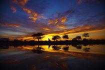 Sunrise, Okaukuejo Rest Camp, Etosha National Park, Namibia, Africa. von Danita Delimont