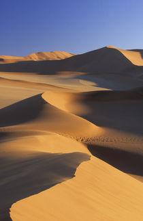 Desert dunes, Sossusvlei, Namib-Naukluft National Park, Namibia by Danita Delimont
