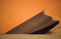 A parabolic dune depicted in evening light. by Danita Delimont