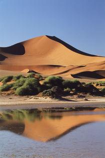 Namibia, Sossusvlei Region, Sand Dunes von Danita Delimont