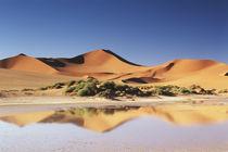 Namibia, Sossusvlei Region, Sand Dunes at desert by Danita Delimont
