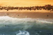 Skeleton Coast, Namibia by Danita Delimont